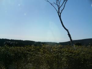 kagosima-nagasaki-travel-28.jpg