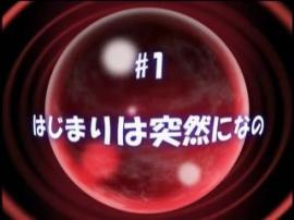 nanohaas1-3.jpg