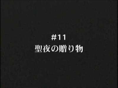 nanohaas11-1.jpg