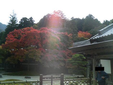 raizannkouyou1-9.jpg