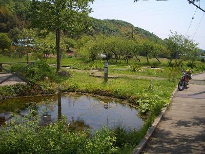 鶴見川 (3)