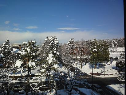 漆の実からの雪景色