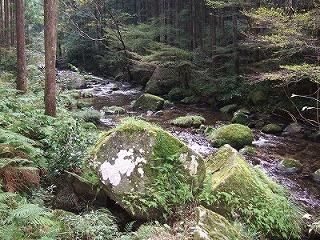 2008_1031熊野古道ヨーガ・リトリート0025