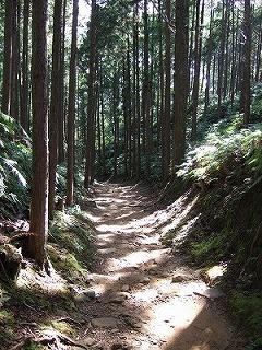 2008_1031熊野古道ヨーガ・リトリート0045