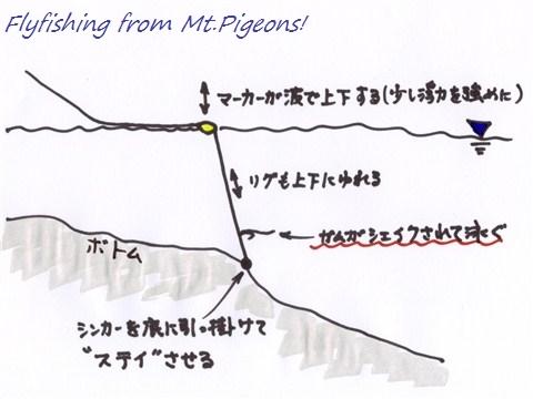 IMG_2011020402.jpg