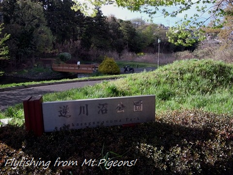 RIMG0152.jpg