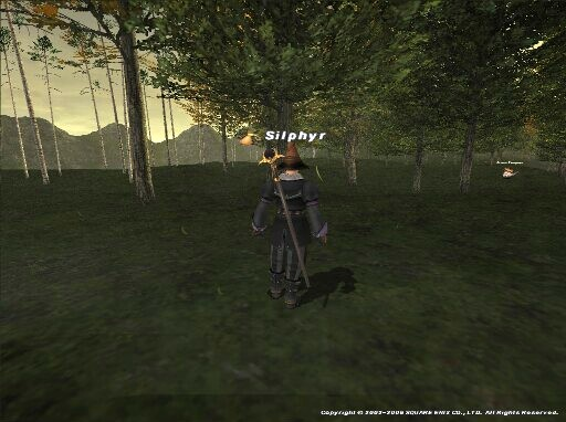 Sil060522011057a.jpg