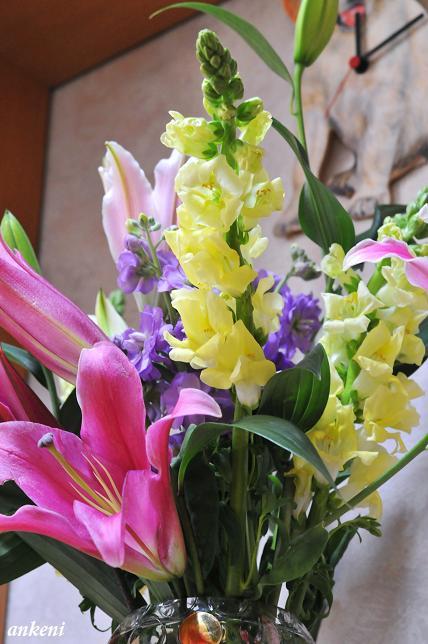 110208 072  お花