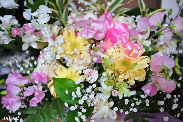 110208 176  お花