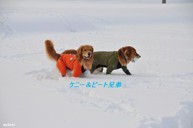 110211 006  ケニー&ビート