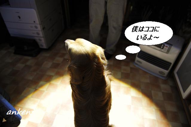 ー11.03.18 021  ケニ