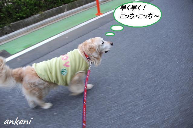 2011.04.21 001  アンディ