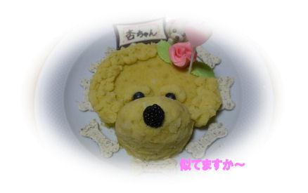 わんこケーキ3