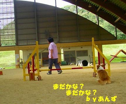 SANY0018_20081013134635.jpg
