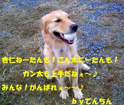 SANY0025_20081030182801.jpg