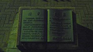DSCN4779.jpg