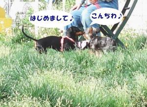 20060528181249.jpg