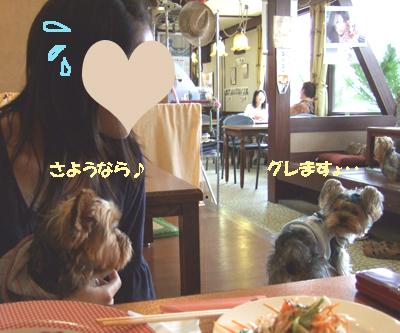 2007_0919220015.jpg