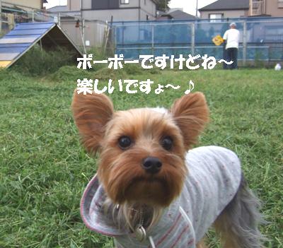 2007_0919220028.jpg