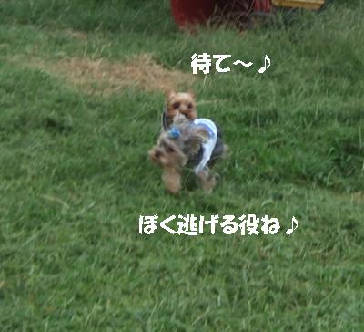 2007_0919220031.jpg