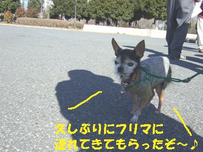 2008_0127220002.jpg