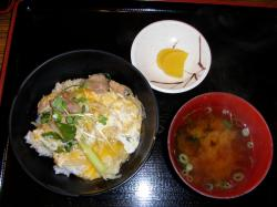 20090504kiji.jpg
