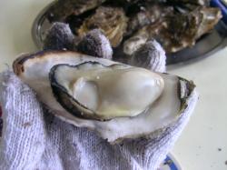 浜英水産 焼牡蠣