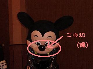 s-2008年キリンパーティ (37)