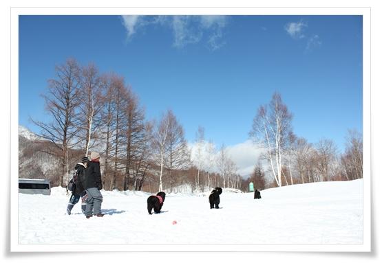 2011_0219norikura0299.jpg