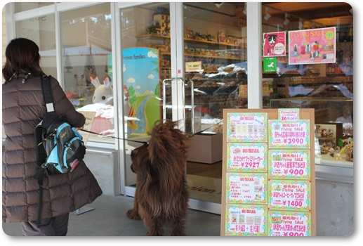 2011_0219norikura0492.jpg
