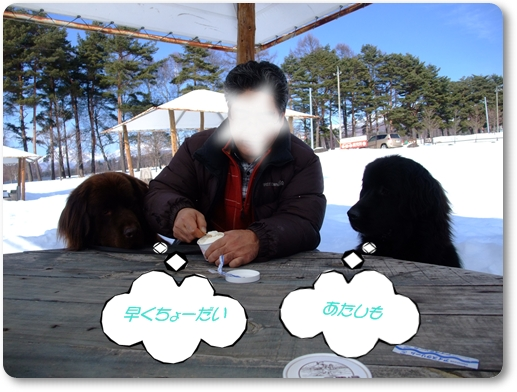 2011_0219norikura20246.jpg