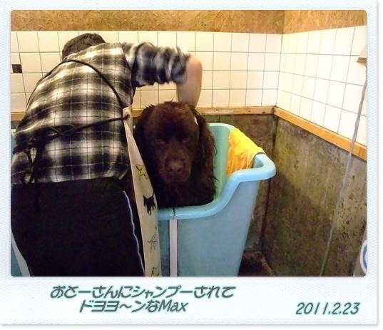 2011_0223bigwan0025.jpg