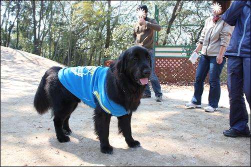 2011_0313inariyama0010.jpg