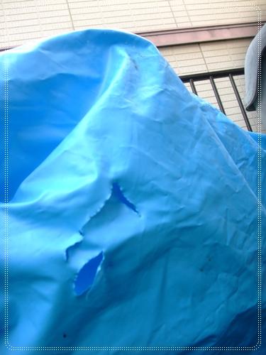 2011_0504max05040007.jpg