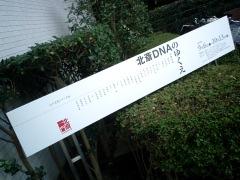 北斎DNAのゆくえ(板橋区立美術館)3