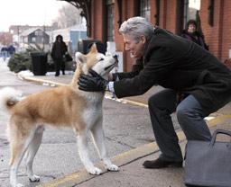 約束の犬1