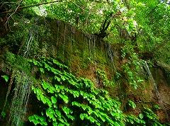 有馬温泉 亀の尾の滝