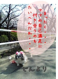 06-03-27_14-04.jpg