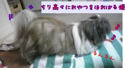 080529_185221_convert_20081109124723-1.jpg