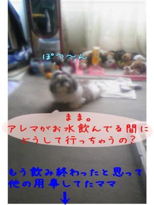 081117-01_convert_20081107110514.jpg