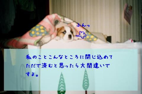 106_7A・搾シ撰シ狙convert_20081102003000