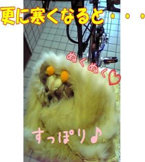 06-02-10_12-30~00_convert_20081106191251