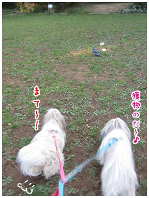 2011-04-15-06.jpg