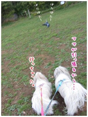2011-04-15-07.jpg