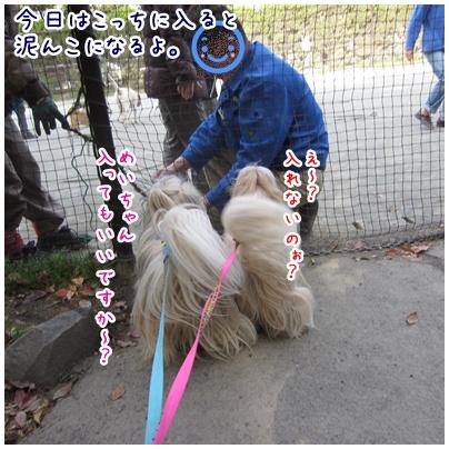 2011-04-17-04.jpg