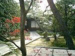 京都の庭らしい?