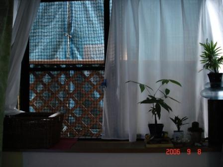 20061031090006.jpg