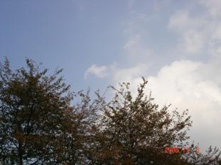20061104003032.jpg