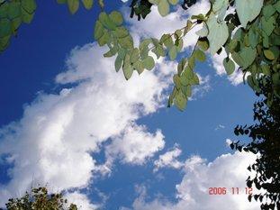 20061112155319.jpg