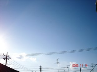 20061114152916.jpg
